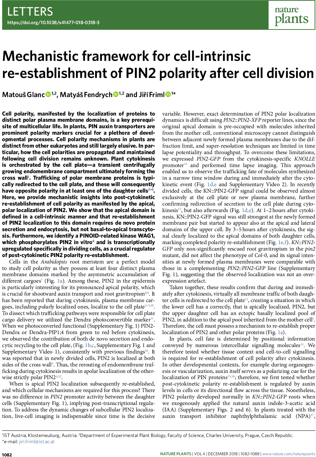 Mechanistic framework for cell-intrinsic re-establishment of PIN2 polarity after cell division